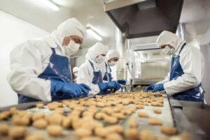lowongan industri makanan di jepang